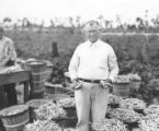 Photographs - - 1935 - - William B. Cheshire in his bean field.