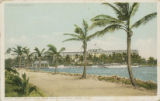 Postcards - - 1910 - 1920 - - Hotel Royal Palm from Picknill's [i.e. Brickell] Point, Miami Fla.