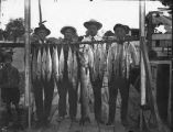 Four Men Standing Behind Their Fishing Catch