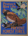 [Pennsylvania: Posters] Protect bird life: Prevent forest fires / W [Joe Wolf?]; Department of...